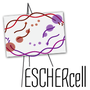 Escher Cell—Tracing biological knowledge across system and scale