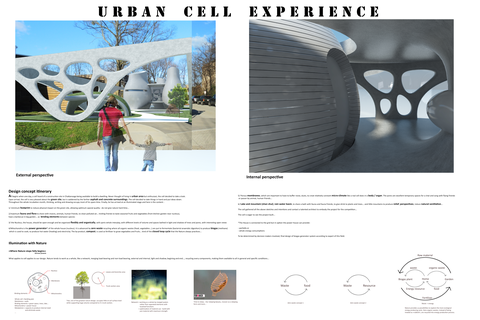 Urban cell experience